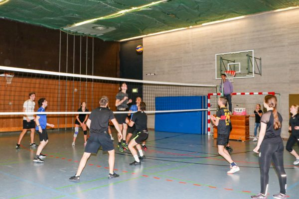 Volleyballturnier 2019-4